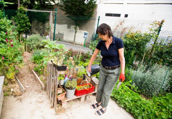 éloigner les moustiques travail dans le jardin