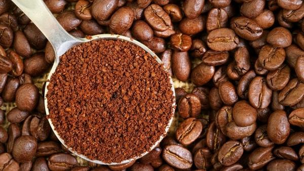 Anti-fourmis naturel sans danger pour enfants et animaux domestiques café