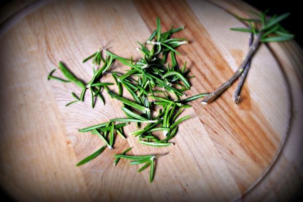 Comment cultiver le romarin utilisation en cuisine