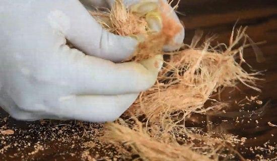 Comment fabriquer vous-même de la tourbe de coco assortir les fibres