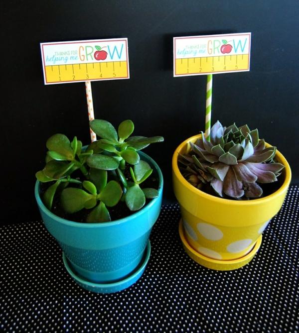 Idée cadeau maîtresse pour dire merci à la fin de l'année scolaire pot de plante