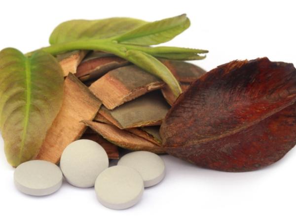 Terminalia arjuna écorce et feuilles