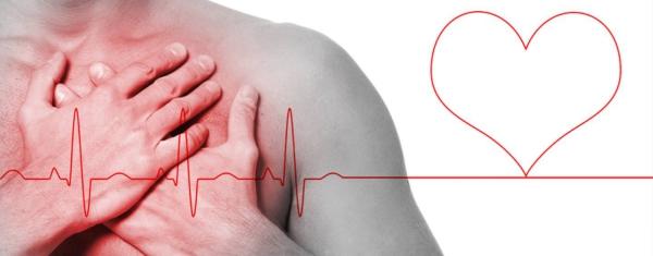 Terminalia arjuna contre infarctus