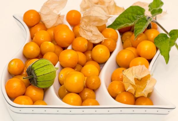 fruit physalis à table