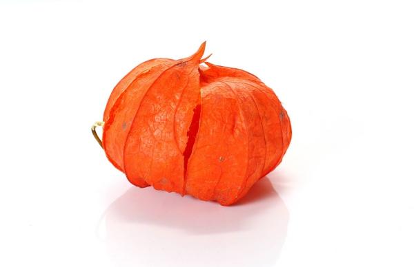 fruit physalis couleur de citrouille