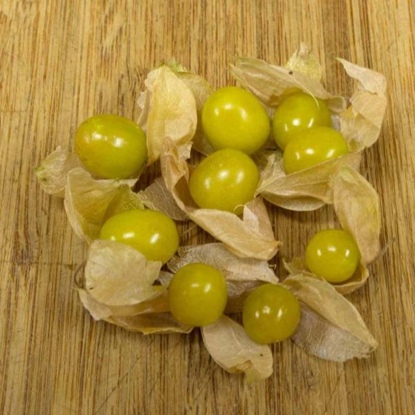 fruit physalis fruits verts