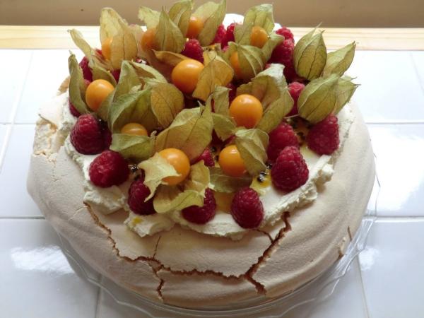 fruit physalis jolie décoration