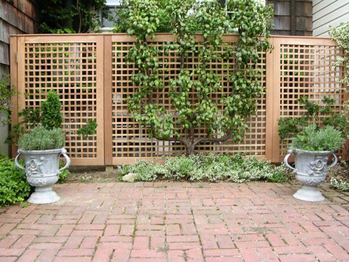 idée de claustra végétalisé pour votre jardin