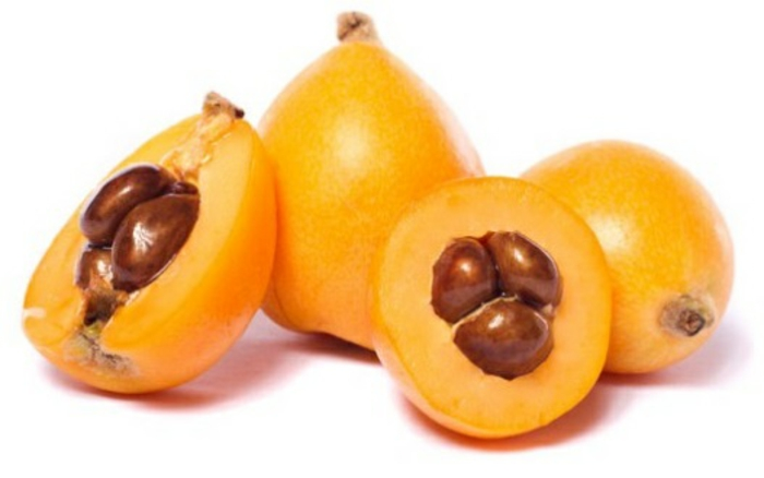 nèfle de japon fruits idées