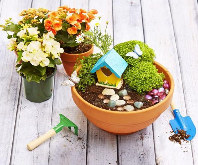 pot en terre cuite un mini-jardin
