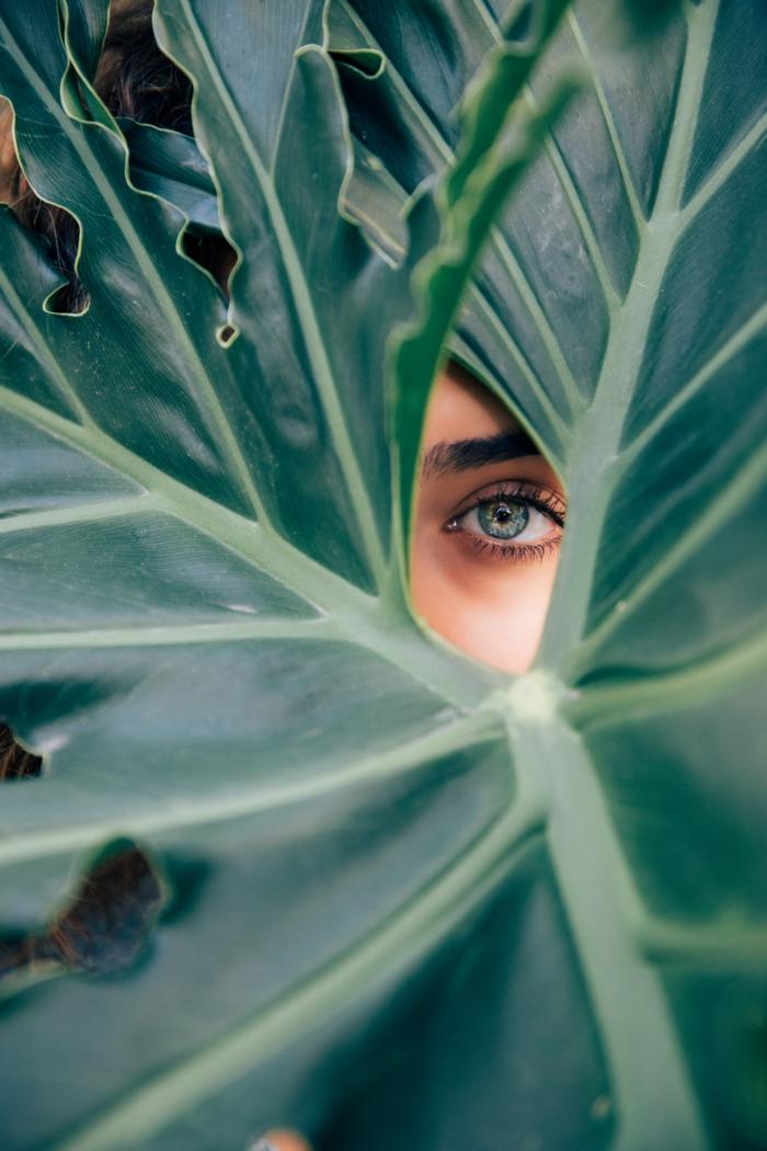 soin pour la peau avec des produits de beauté bio