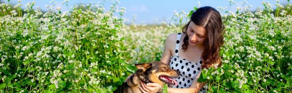 traitement allergies avec un animal domestique