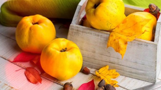 aliments contre la diarrhée de bons coings