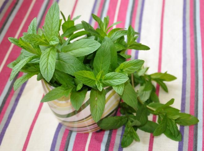 aliments contre la diarrhée menthe crépue
