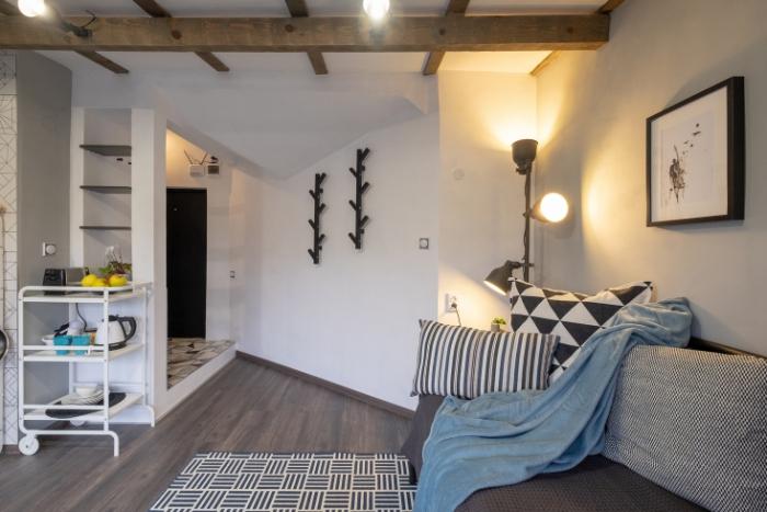 aménagement petit appartement étagères en face
