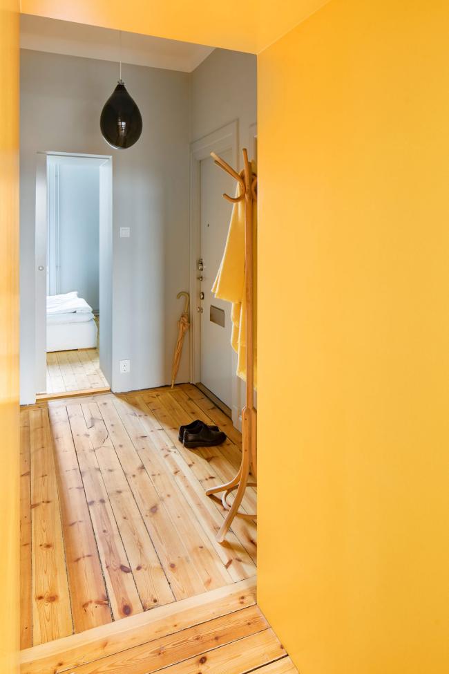 aménager appartement 45m2 une petite entrée