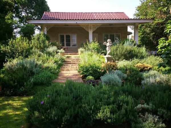 bienfaits du romarin jardin de romarin