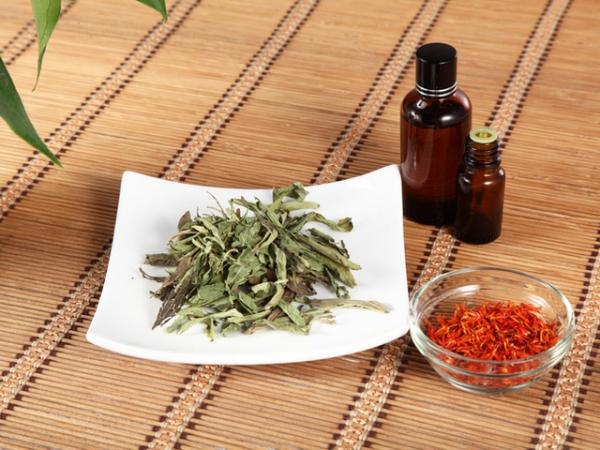 culture safran feuilles de safran
