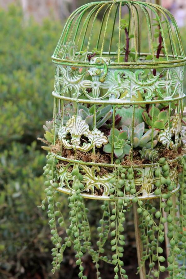 déco cage oiseau jardin jardinière suspendue