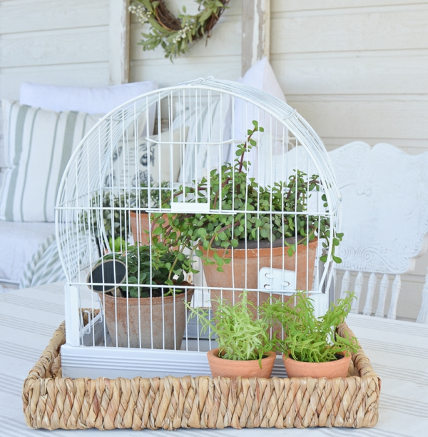 déco cage oiseau jardinière salon de jardin