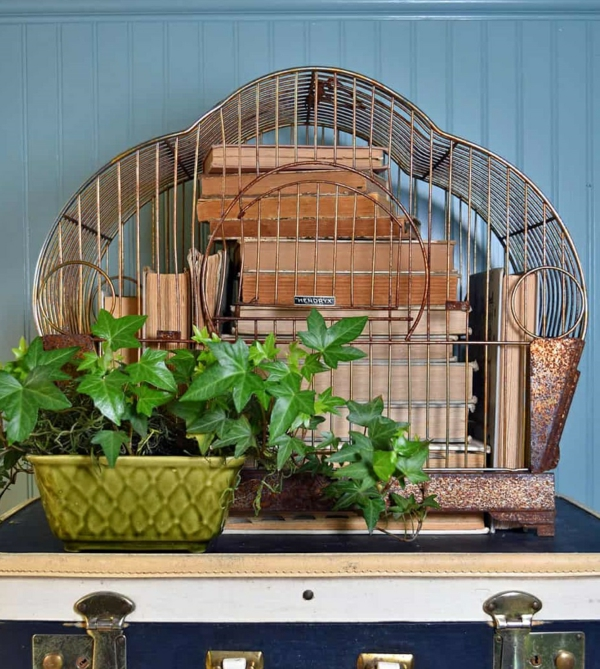 déco cage oiseau salon boîte à livres