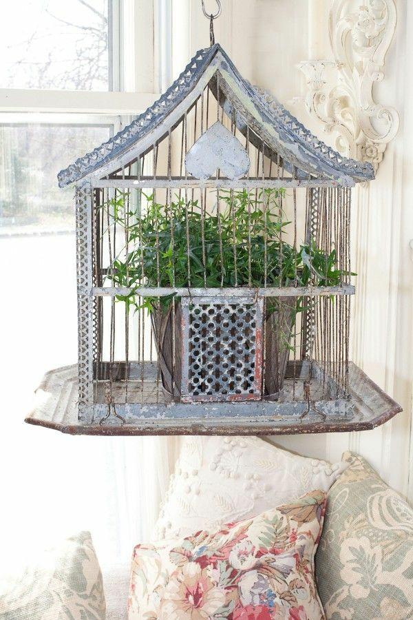 déco cage oiseau vintage avec plante
