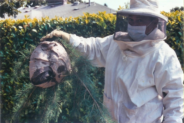 enlever un nid de guêpes costume de protection