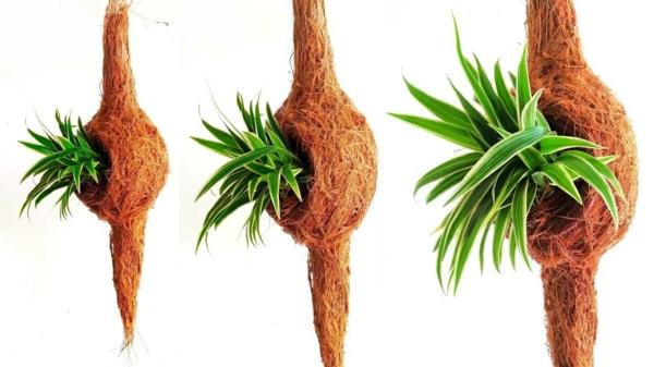 jardinière suspendue à fabriquer soi-même tourbe de coco