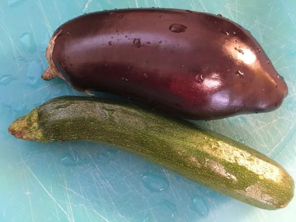 lasagnes aux légumes et à la mozzarella courgette aubergine