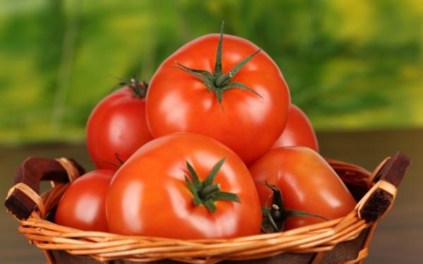 lasagnes aux légumes et à la mozzarella tomates mûres