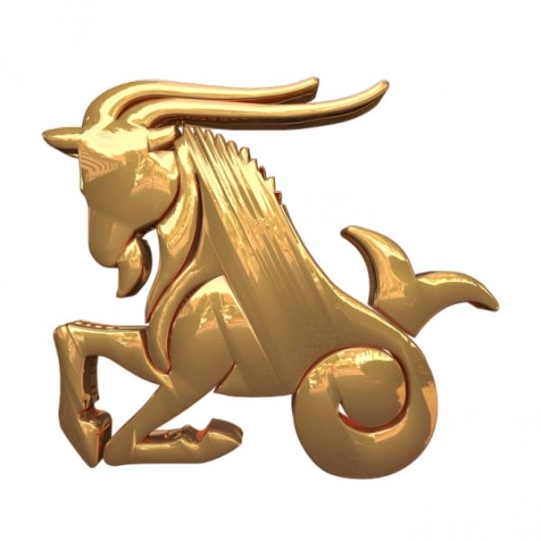 signes du zodiac le Capricorne