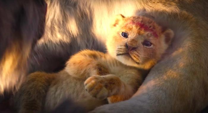 sima le roi lion film 2019