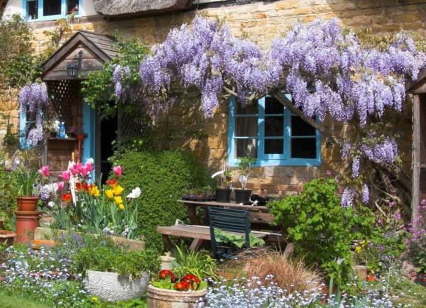 aménagement jardin paysager beauté sereine