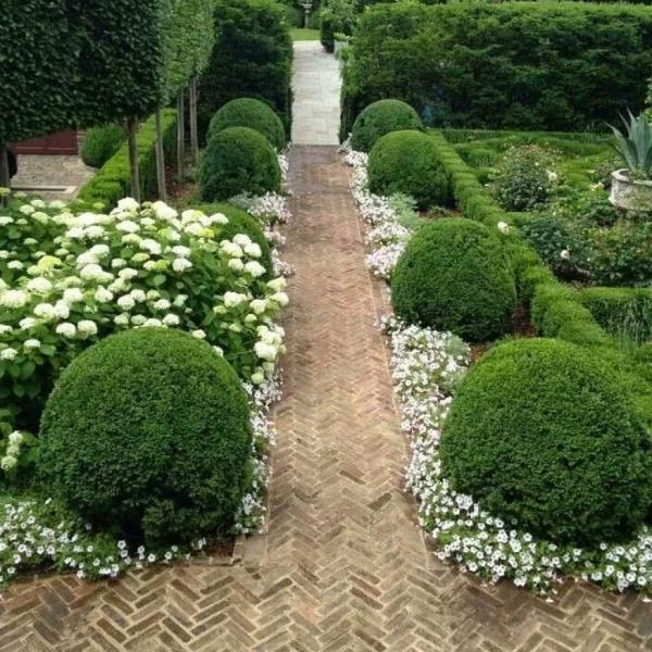 aménagement jardin paysager blanc et vert