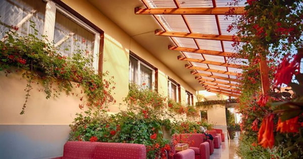 aménagement jardin paysager jardinières et treillis