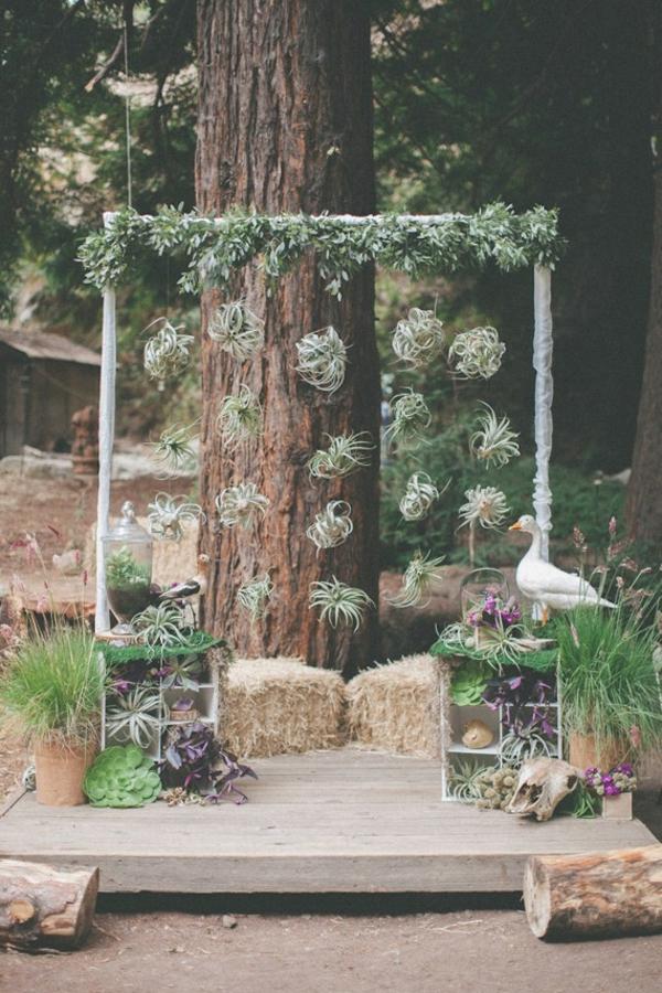 arc de mariage plantes Tillandsia