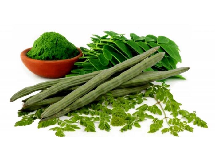bienfaits du moringa cosses et feuilles