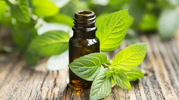 dentifrice solide huile essentielle à la menthe