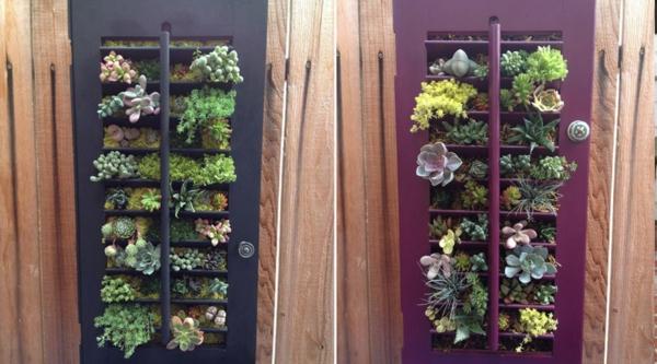 diy jardin vertical plantes volet fenêtre