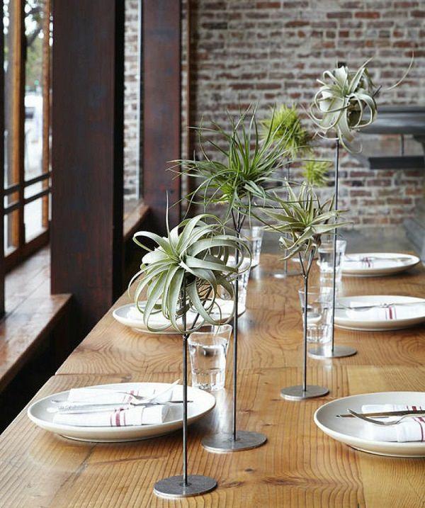idée déco de table plantes Tillandsia métal