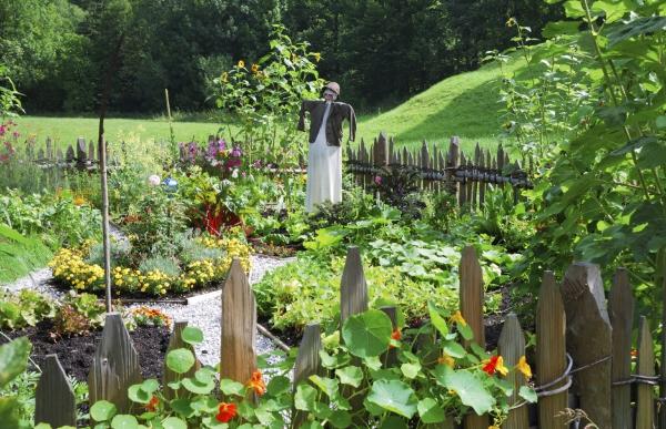 jardin potager joli voisinage