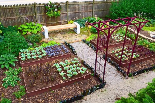 jardin potager vue agréable
