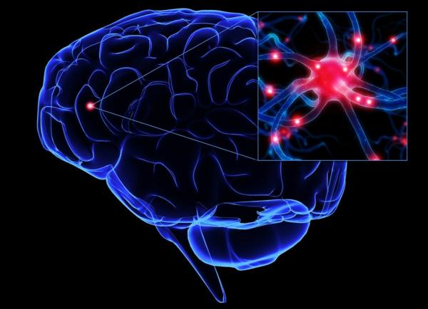 le bâillement fournit de l'oxygène au cerveau
