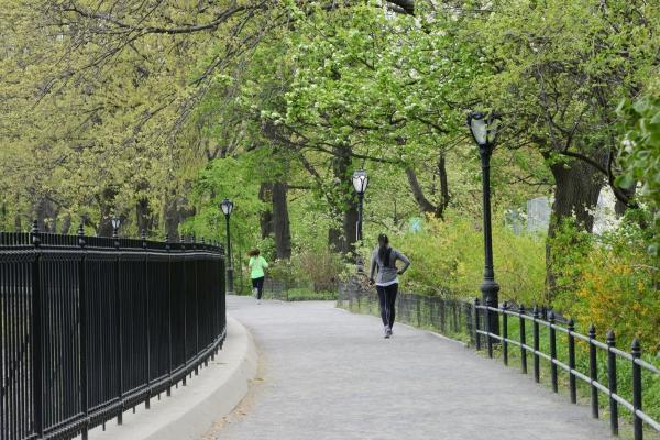 les bienfaits du jogging dans le parc