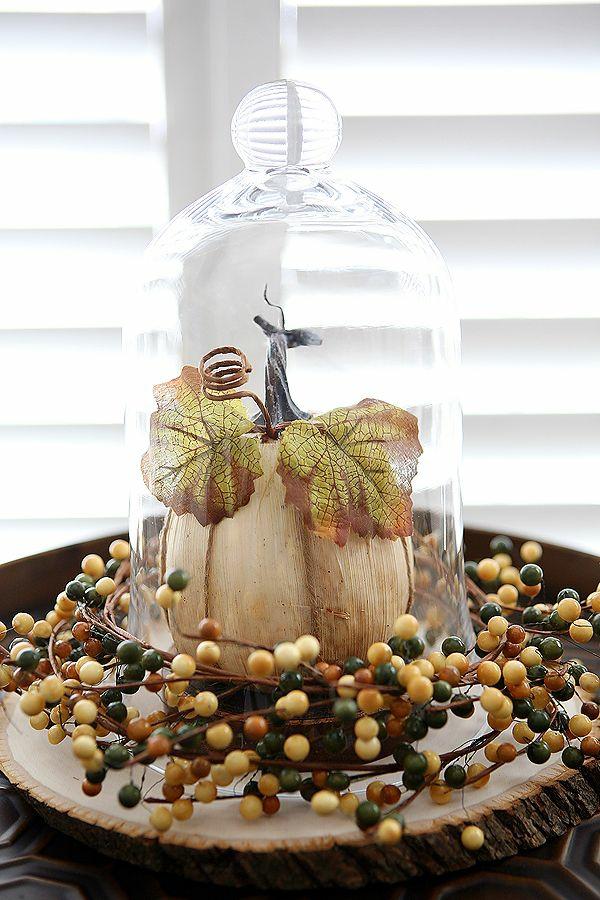 bricolage automne citrouille sous cloche en verre