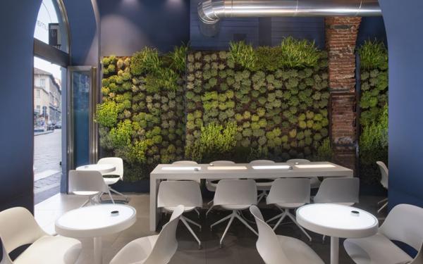 bureau contemporain design environnement biophile