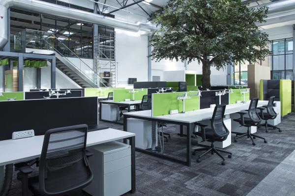 bureau contemporain design un arbre au milieu