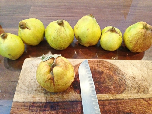 choisir de bons fruits pour préparer la recette gelée de coing