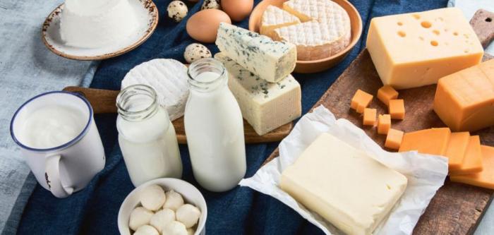 conservation des aliments lait et fromage