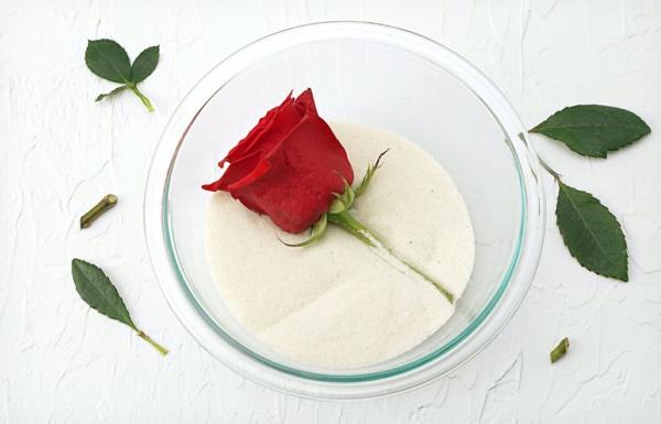 conserver un bouquet de mariage dans sable